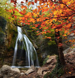 Cascata nel autumn-4 Fotografie Stock