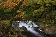 Cascata nel fiume Little Pigeon in autunno fotografia stock libera da diritti