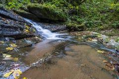 Cascata nel Foreste Casentinesi NP in autunno, Toscana, Ital Immagini Stock