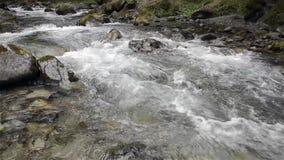 Cascata nel freddo di inverno con ghiaccio e neve stock footage