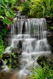 Cascata nel giardino Fotografie Stock Libere da Diritti