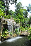 Cascata nel giardino botanico del Malacca Fotografie Stock