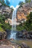 Cascata nel parco nazionale di Springbrook Immagini Stock Libere da Diritti