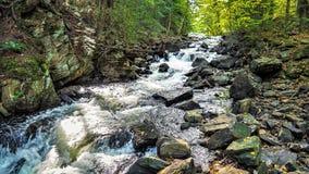 Cascata 2 nel parco provinciale Forest Hiking Trail del Algonquin fotografie stock libere da diritti