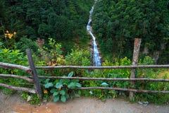 Cascata nel plateau Rize di Ayder Fotografia Stock
