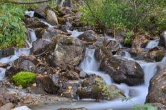 Cascata nella foresta Fotografia Stock Libera da Diritti