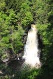 Cascata nella foresta Fotografia Stock