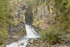 Cascata nella foresta, alpi italiane Immagine Stock Libera da Diritti