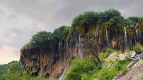 Cascata nella foresta che scorre giù dalla roccia stock footage