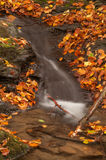 Cascata nella foresta di autunno Fotografie Stock Libere da Diritti