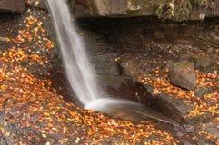 Cascata nella foresta di autunno Fotografia Stock