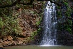 Cascata nella foresta di Ngare Ndare, Kenya Immagini Stock