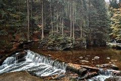 Cascata nella foresta scandinava della montagna del pino della natura alla luce di sera Bagni le pietre fredde della roccia coper fotografia stock