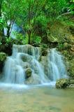 Cascata nella foresta tropicale Immagine Stock Libera da Diritti