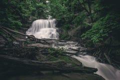 Cascata nella foreste del Canada immagini stock libere da diritti