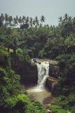 Cascata nella giungla Fotografia Stock Libera da Diritti