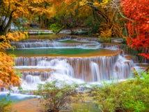 Cascata nella giungla profonda della foresta pluviale (Huay Mae Kamin Waterfall i Fotografia Stock
