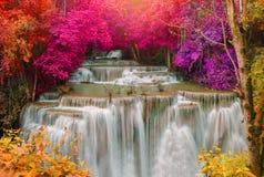 Cascata nella giungla profonda della foresta pluviale (Huay Mae Kamin Waterfall i Fotografie Stock Libere da Diritti