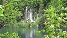 Cascata nella sosta nazionale di Plitvice stock footage