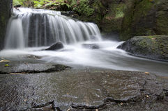 Cascata nella valle di Lumsdale, Inghilterra Fotografie Stock Libere da Diritti