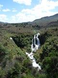Cascata nella valle, Nuova Zelanda Immagini Stock