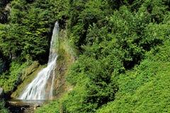 Cascata nelle alpi italiane circondate da vegetazione Fotografie Stock Libere da Diritti
