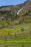 Cascata in Norvegia Fotografia Stock Libera da Diritti