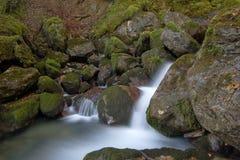 Cascata nos pyrenees franceses Imagens de Stock