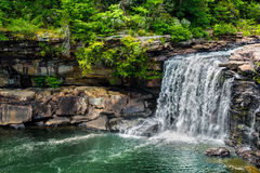 Cascata a poca prerogativa nazionale del canyon del fiume fotografia stock libera da diritti
