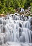 Cascata precipitante a cascata al parco nazionale del monte Rainier Immagini Stock
