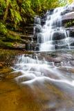 Cascata precipitante a cascata circondata da vegetazione fertile fotografie stock