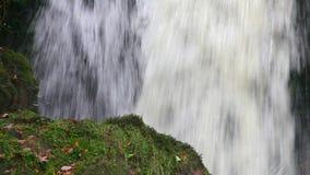 Cascata precipitante a cascata dell'acqua archivi video