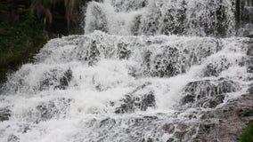 Cascata precipitante a cascata di Dzhurynskyi della primavera video d archivio
