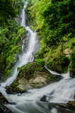 Cascata profonda della foresta fotografia stock libera da diritti