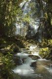 Cascata a Rincon de la Vieja. Fotografie Stock Libere da Diritti