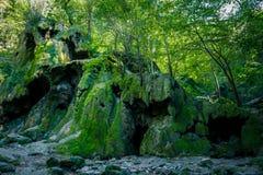 Cascata secca di Beusnita, Romania fotografia stock libera da diritti