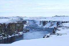 Cascata Selfoss in Islanda, orario invernale Fotografia Stock