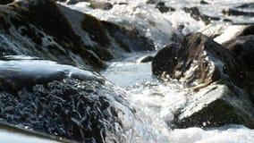 Cascata su un fiume alpino in Austria archivi video