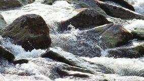 Cascata su un fiume alpino in Austria stock footage