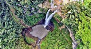Cascata sulle Mauritius Immagini Stock