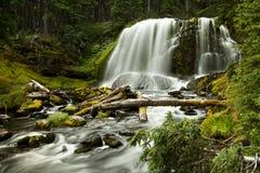 Cascata Sunlit Immagine Stock
