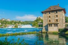 Cascata Svizzera del Reno Fotografia Stock Libera da Diritti