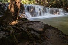 Cascata in Tailandia con la radice dell'albero come priorità alta Fotografia Stock