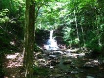Cascata tranquilla trovata lungo The Creek nelle foreste della Pensilvania centrale immagini stock libere da diritti