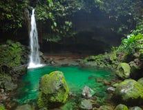 Cascata tropicale Fotografie Stock Libere da Diritti