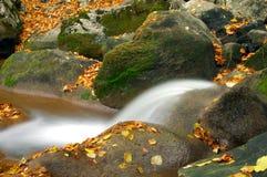 Cascata tropicale in foresta Fotografia Stock Libera da Diritti