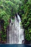 Cascata tropicale in giungla Immagini Stock