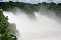 Cascata in tropici Fotografia Stock Libera da Diritti