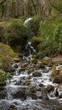 Cascata trovata nel Devon e Cornovaglia Fotografia Stock Libera da Diritti