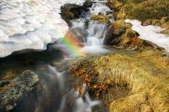 Cascata in Ucraina - sul fiume di Prut Fotografie Stock Libere da Diritti